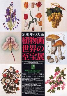 英国王立園芸協会(RHS)創立200周年記念: 500年の体系─植物画世界の至宝展
