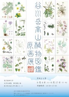 谷川岳高山植物図鑑原画展